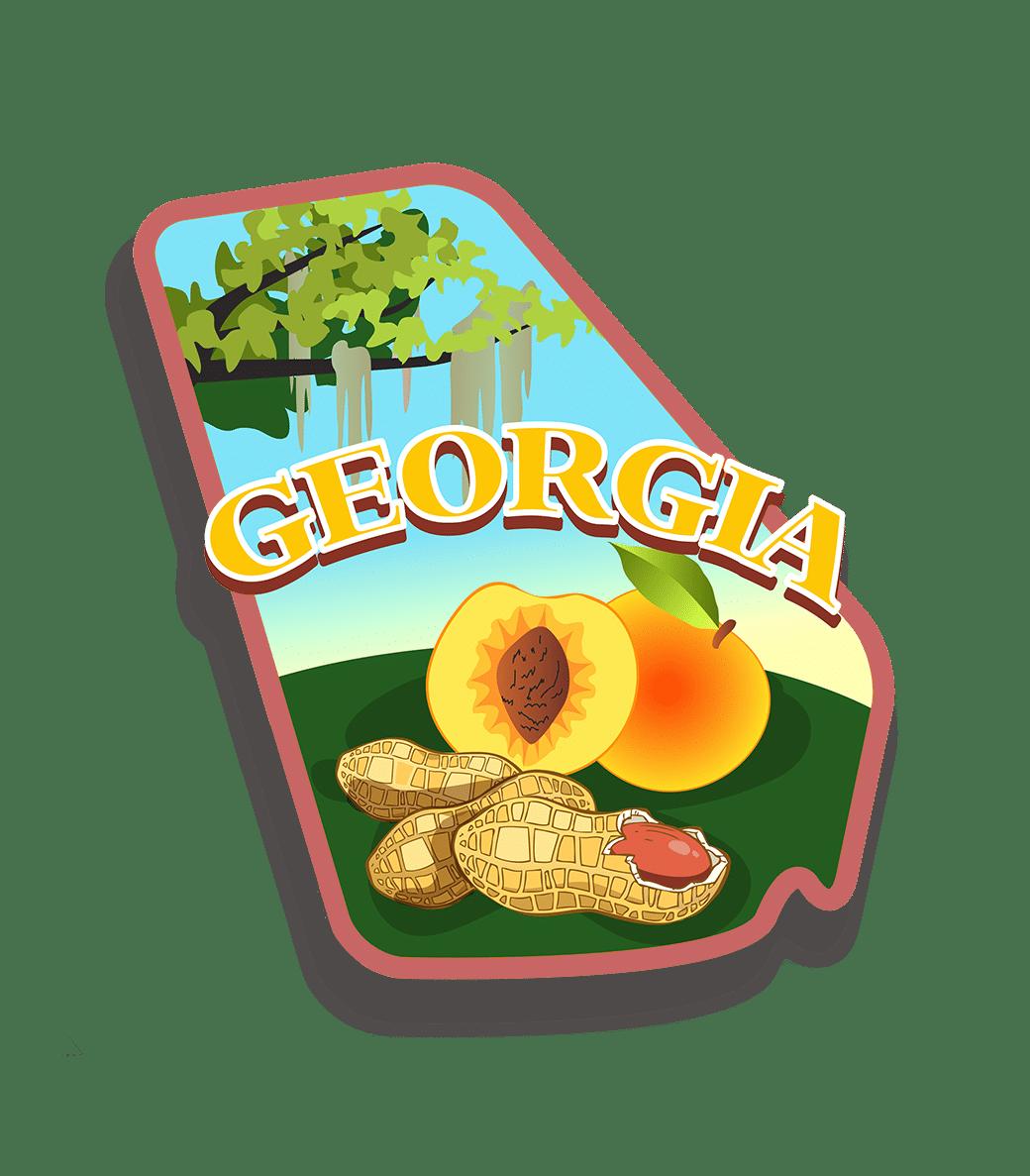 Lawsuit funding in Georgia