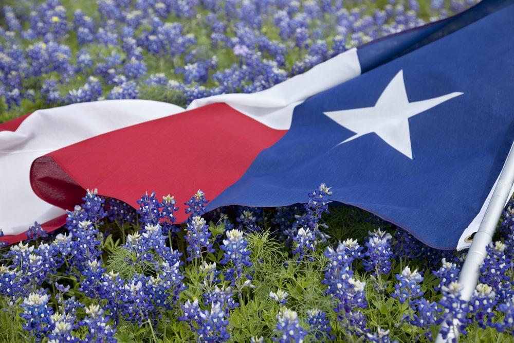 Texas lawsuit loans