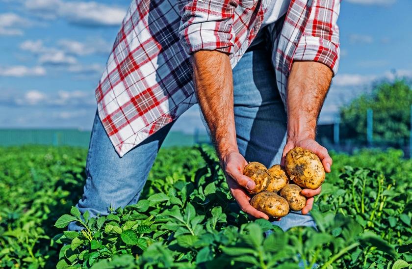 Farming accident pre settlement loans